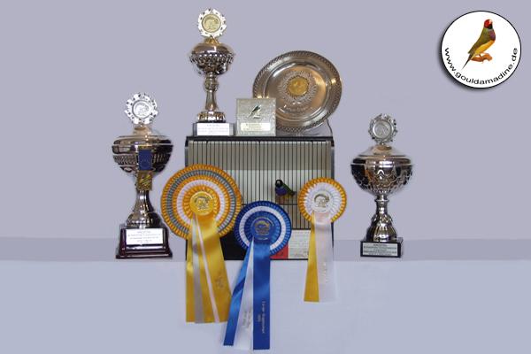 Europa Championat 2019